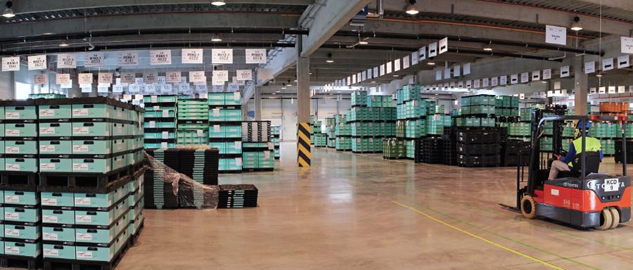 консолидированные склады