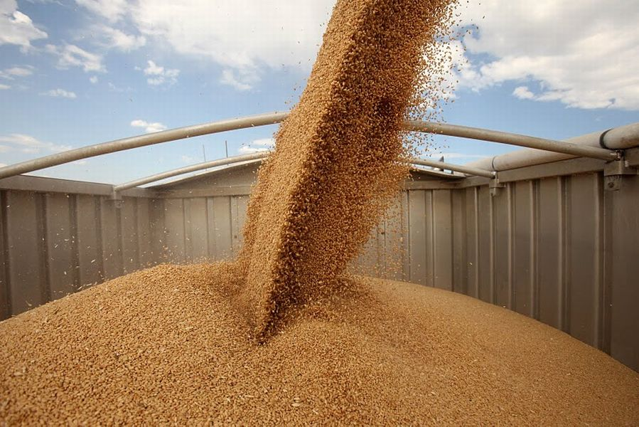 Перевозка зерна зерновозами