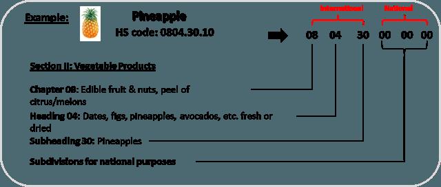 Гармонизированная система таможенных кодов - HS коды